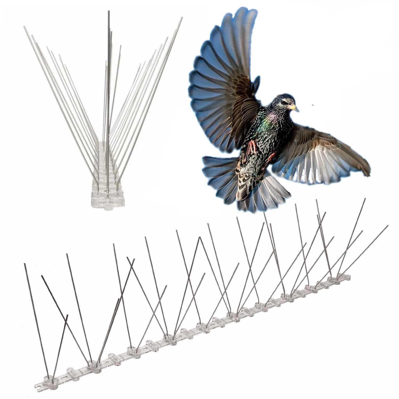 Starling Bird Spikes