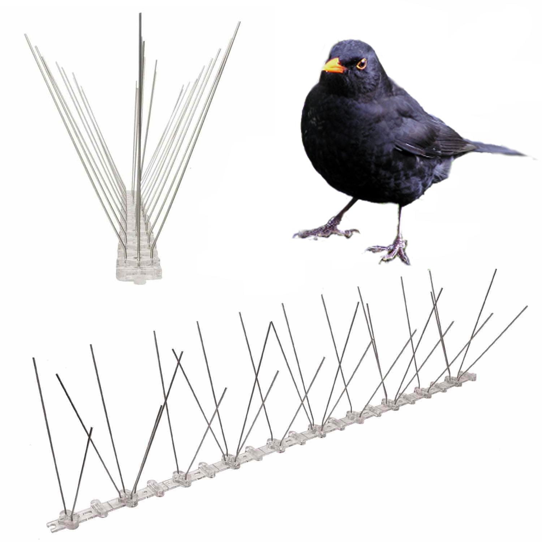 spikes to stop blackbirds